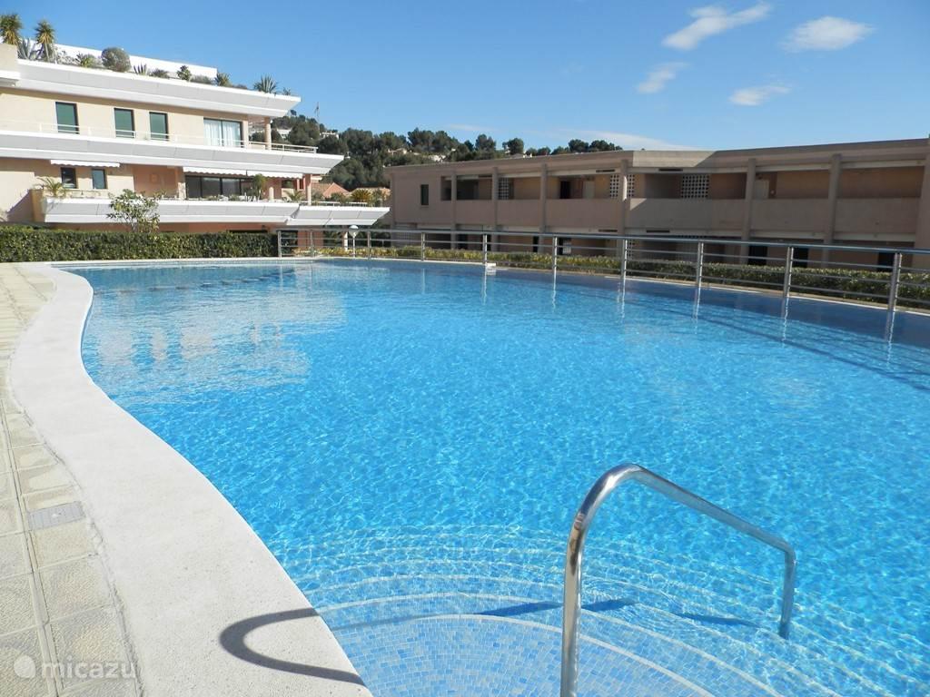 eerste zwembad