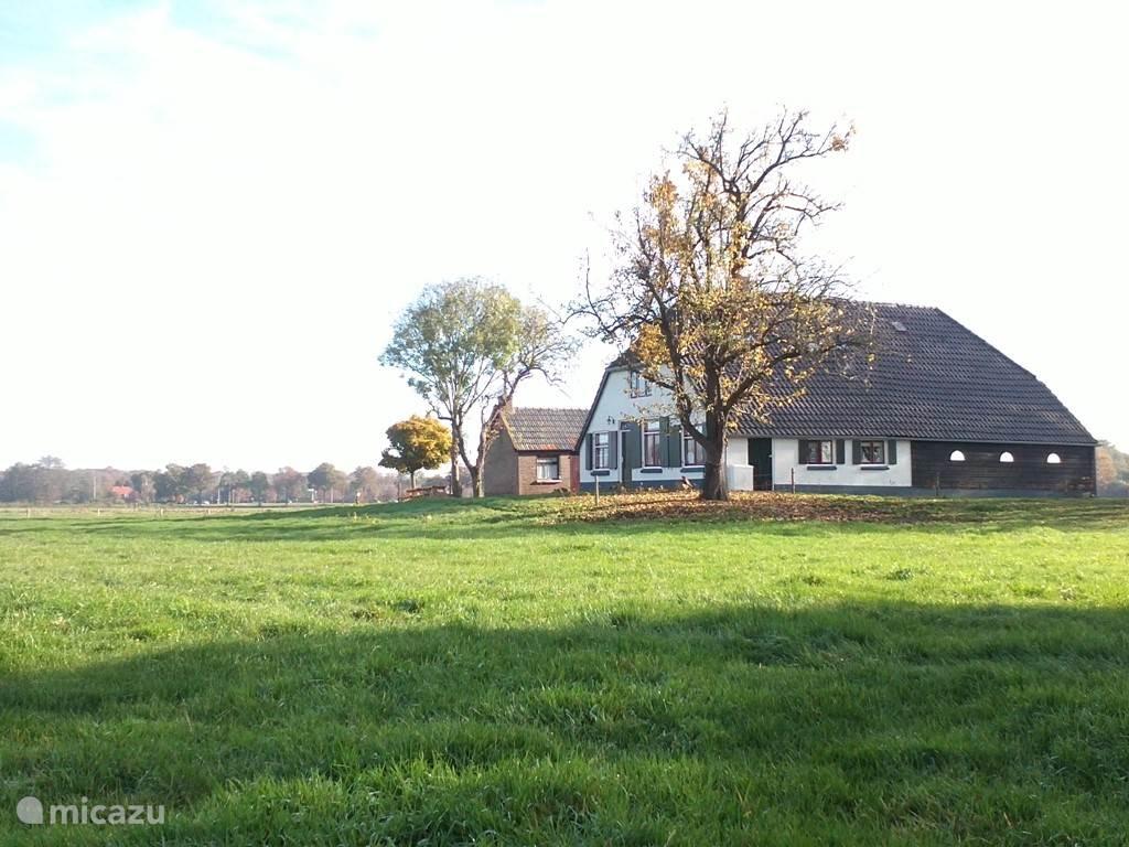 Vrijstaande boerderij op een Terp.
