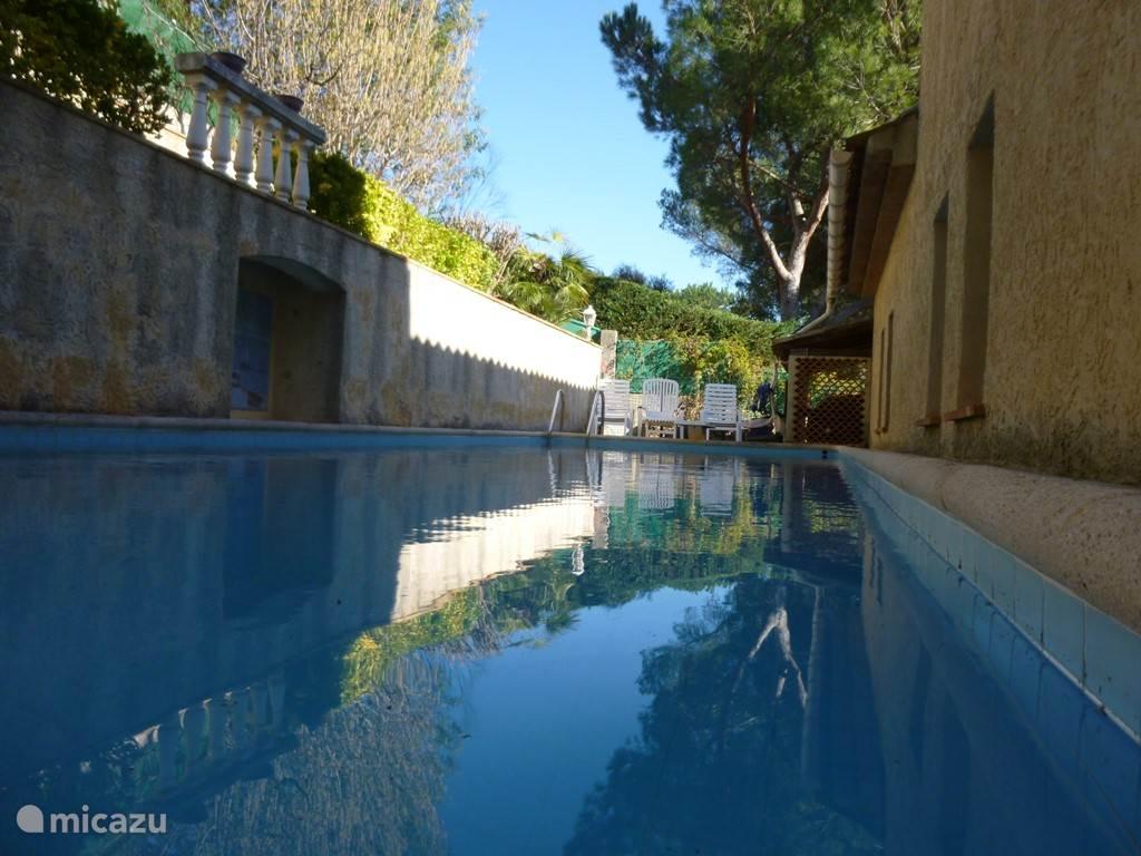 Zwembad met springplank