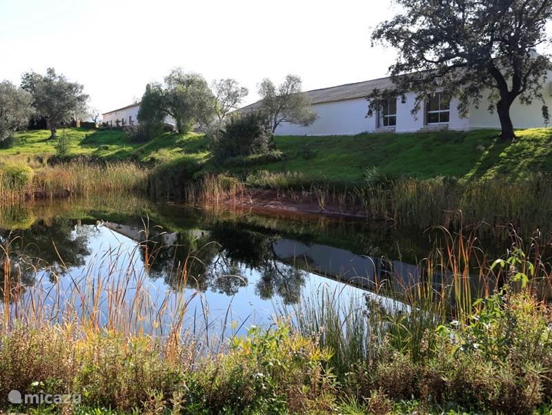 Vakantiehuis Portugal, Algarve, Loule - boerderij Monte da Arneirinha voor 2 x 2-4 p.