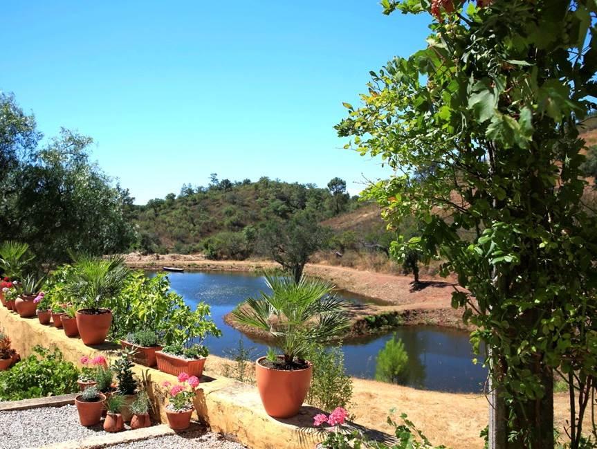 Uitzicht op het meer vanaf het terras bij het woonhuis van de eigenaar