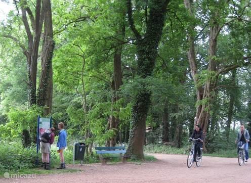 Winterswijk is aangesloten op het fietsknooppunten netwerk in de Achterhoek, dus dat betekent dat je je eigen route samen kunt stellen. Bij veel boerenbedrijven vind je rustpunten waar je op basis van zelfbediening koffie en thee kan krijgen.