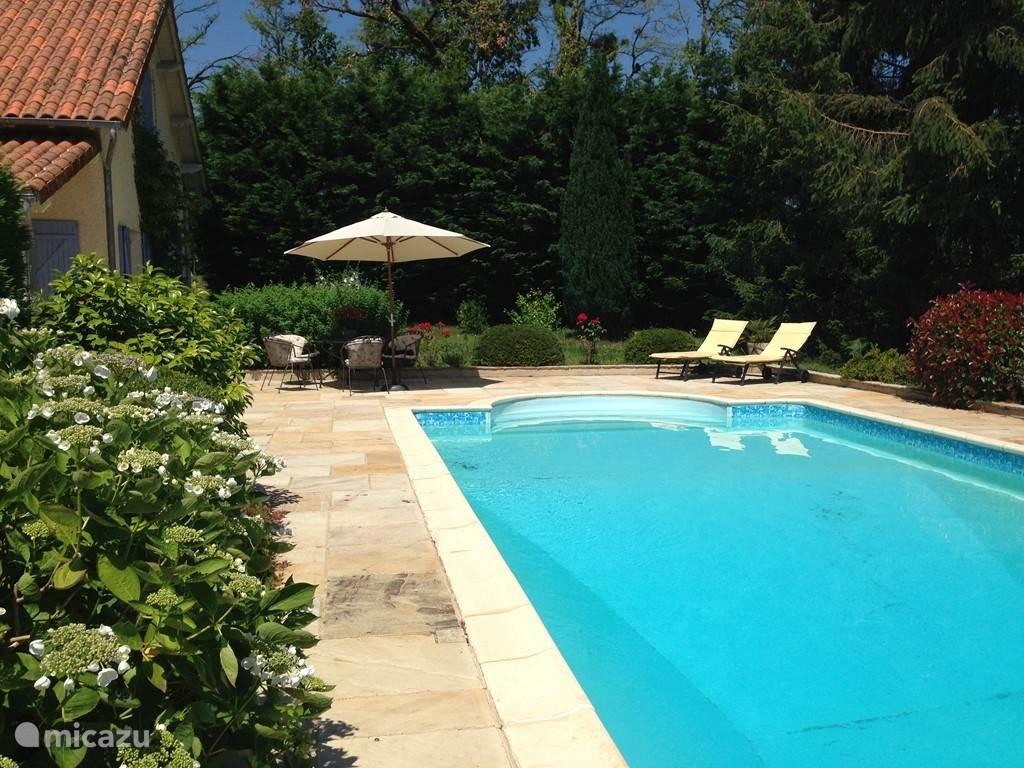zwembad 10x 5 meter en Romeinse trap met natuurstenen terras