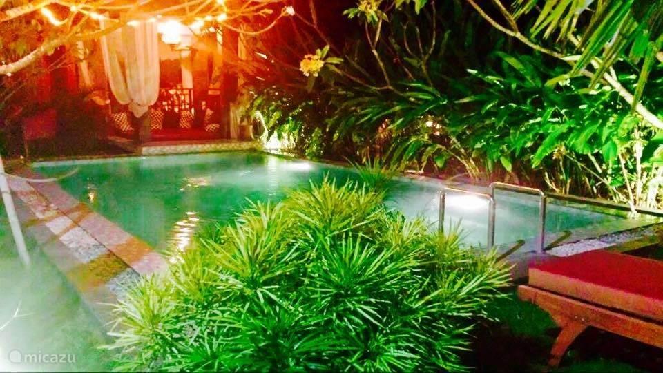 zwembad in prachtige tuin