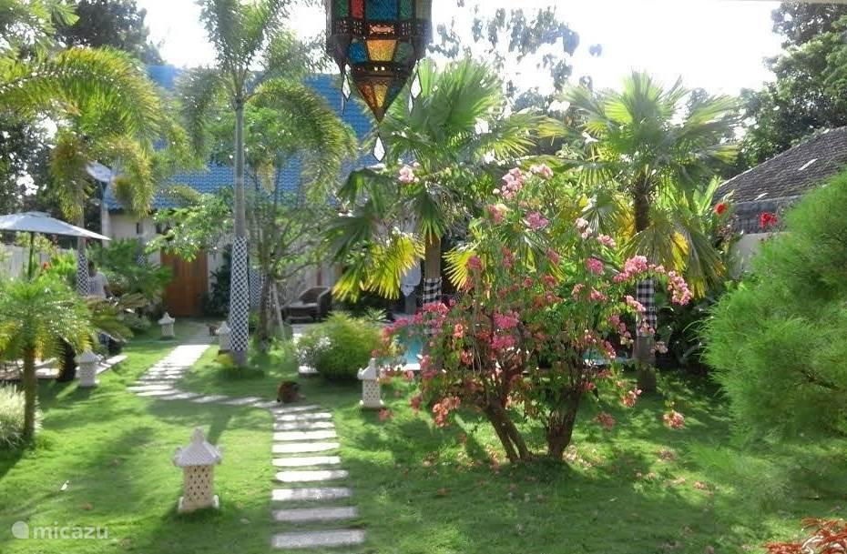 mooie groene tuin