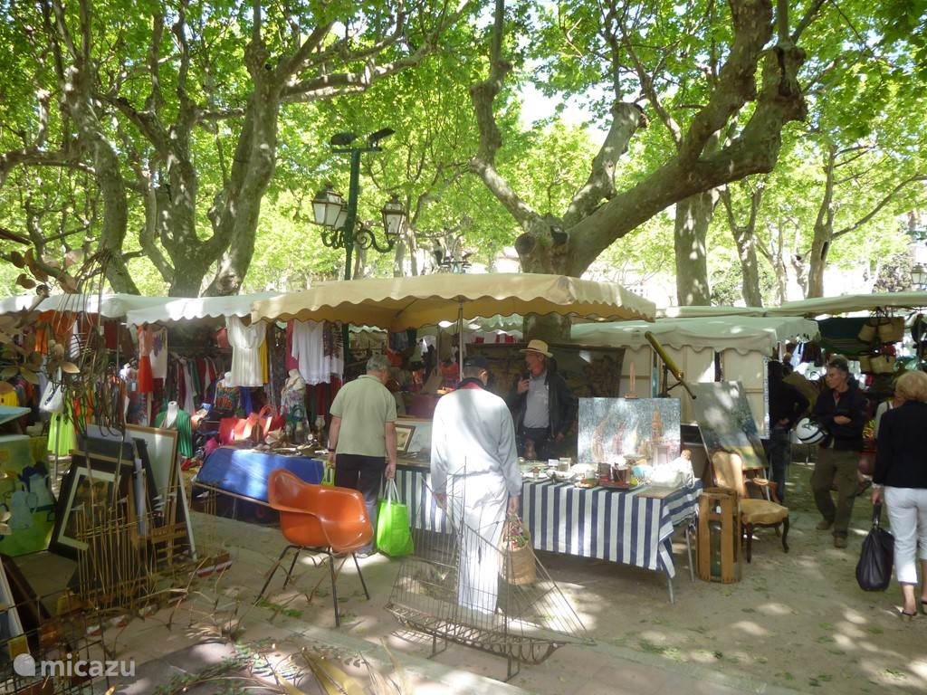 Place de Lices , een van de mooiste pleinen van Frankrijk waar op de dinsdag-en zaterdagmorgen een provencaalse markt wordt gehouden.