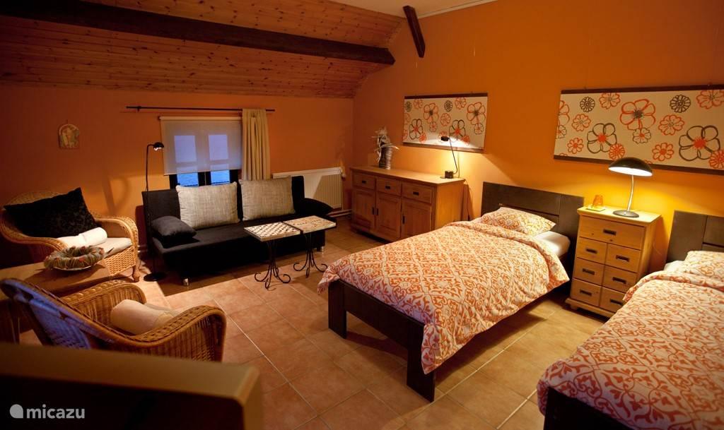 De lounge/slaapkamer.