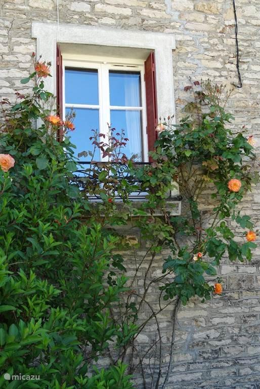 heerlijk geurende rozen om het voorraam