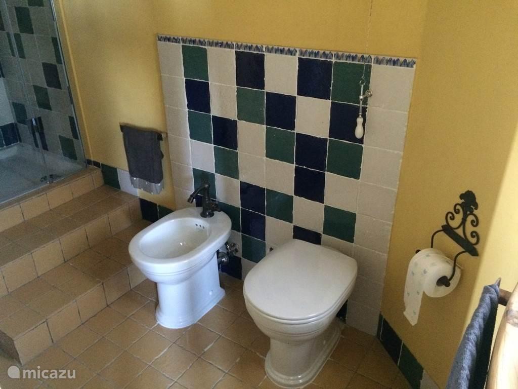 Mooie badkamer, wel met een paar treden naar de douche.