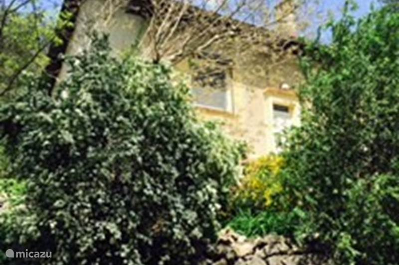 Vacation rental France, Gard, Saint-Hippolyte-du-Fort Holiday house Les Chenes Verts
