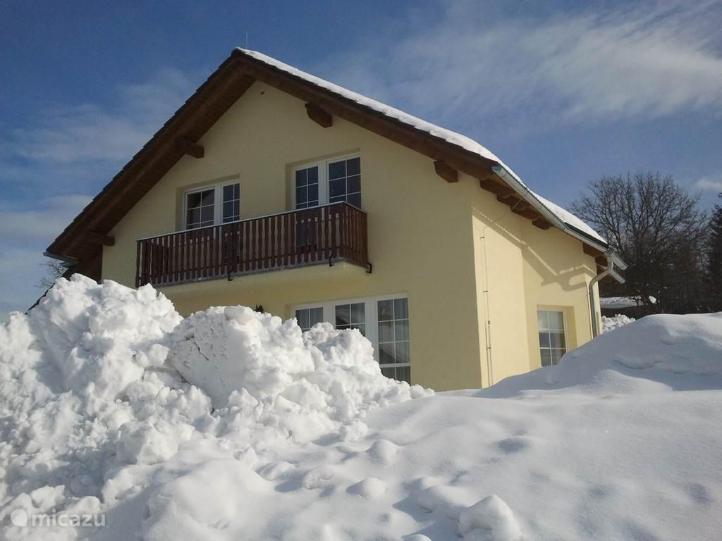 veel sneeuw in Tsjechie