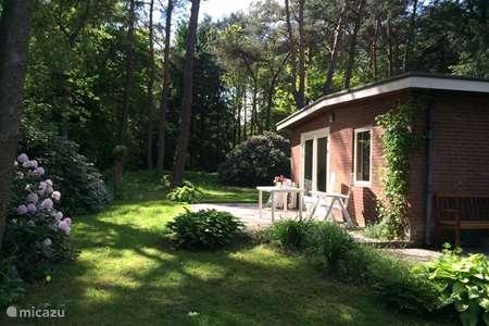 Vakantiehuis Nederland, Veluwe, Beekbergen bungalow Birdjoy