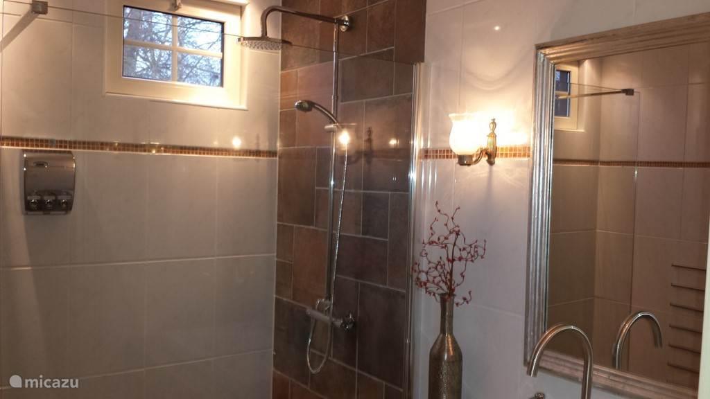 de splinternieuwe badkamer