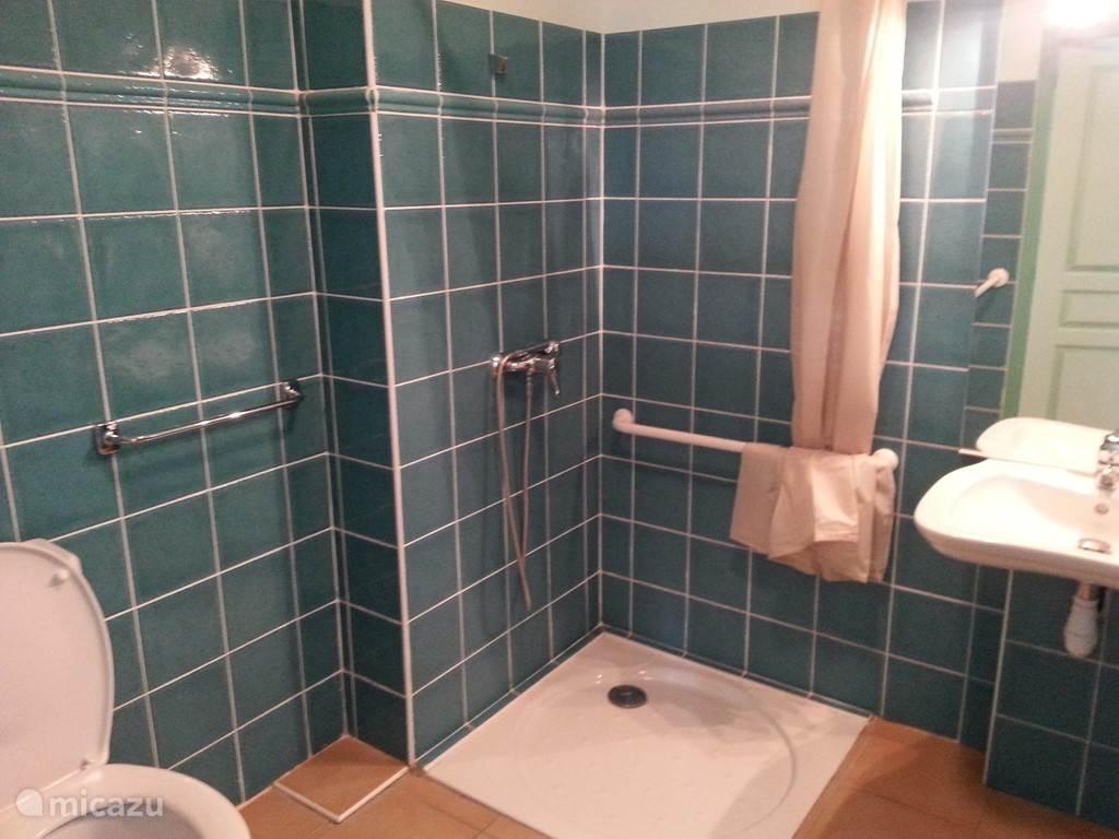 Voor rolstoel toegangelijke badkamer met douche op de beganegrond