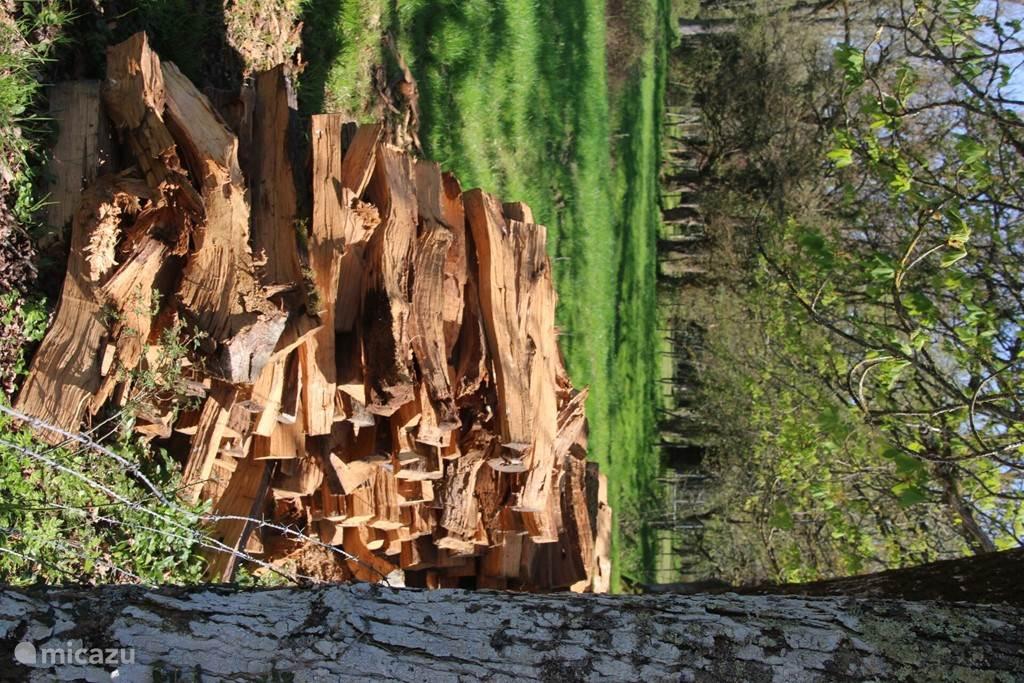 Wood enough.