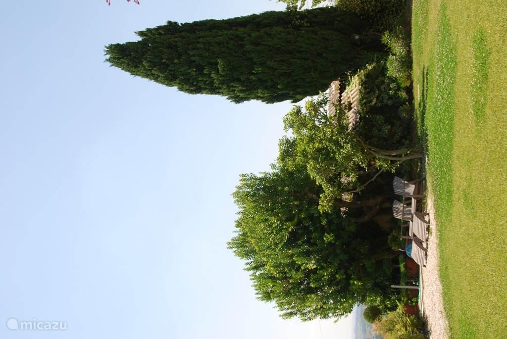 Een van de mooie hoeken van de tuin