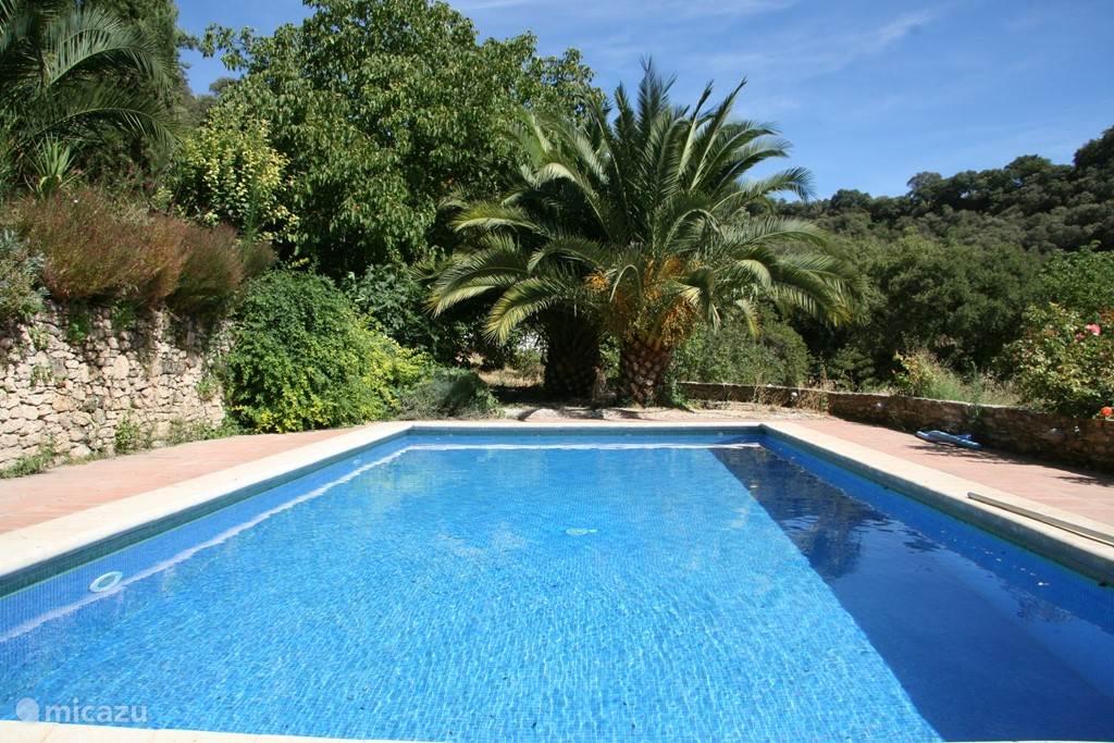 Het grote zwembad ligt aan het huis bij het sfeervolle terras, uitkijkend over de groene vallei.  Een heerlijke plek om te zonnen, zwemmen en af te koelen.