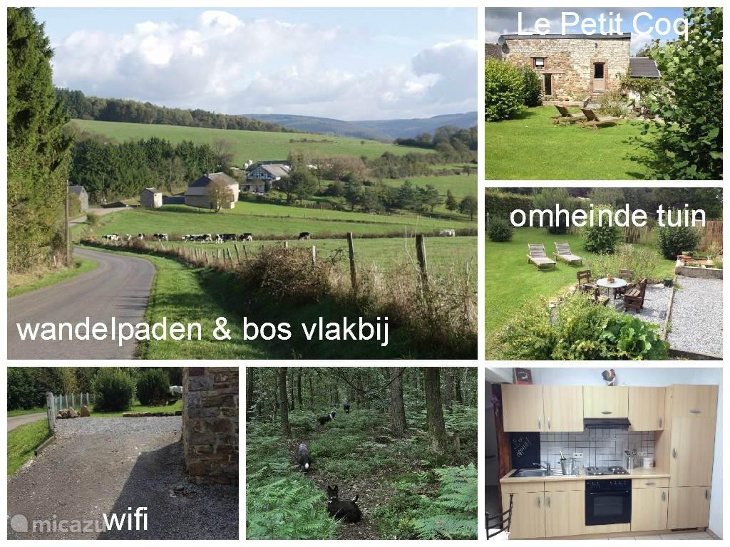 Südlage mit Garten, ideal für Ruhe Suchende und Wanderer, auch Ihr Hund willkommen ist