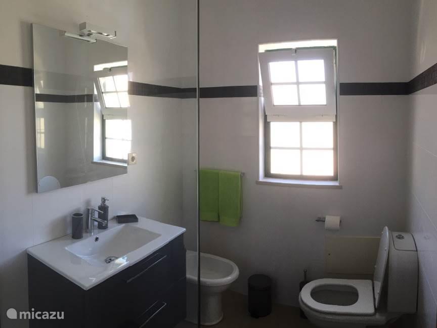 Badkamer met wastafel, toilet, bidet en ruime douche