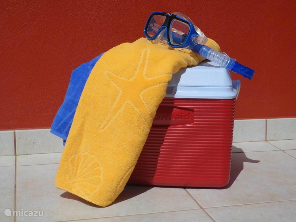 Klaar om naar het strand te gaan?