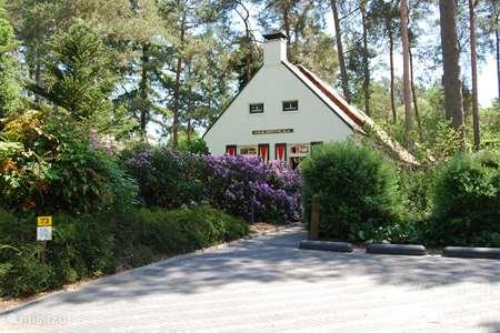 Vakantiehuis Nederland, Drenthe, Diever vakantiehuis Huis Drenthe