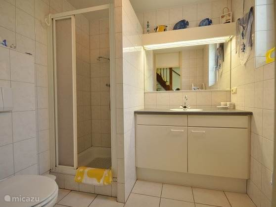 Badkamer met wastafel, douche en toilet.
