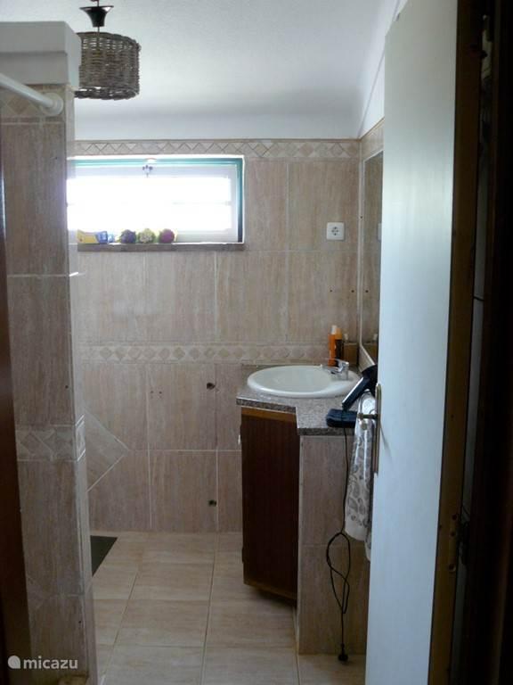 Badkamer bij het 2 slaapkamer appartement met douche en toilet.