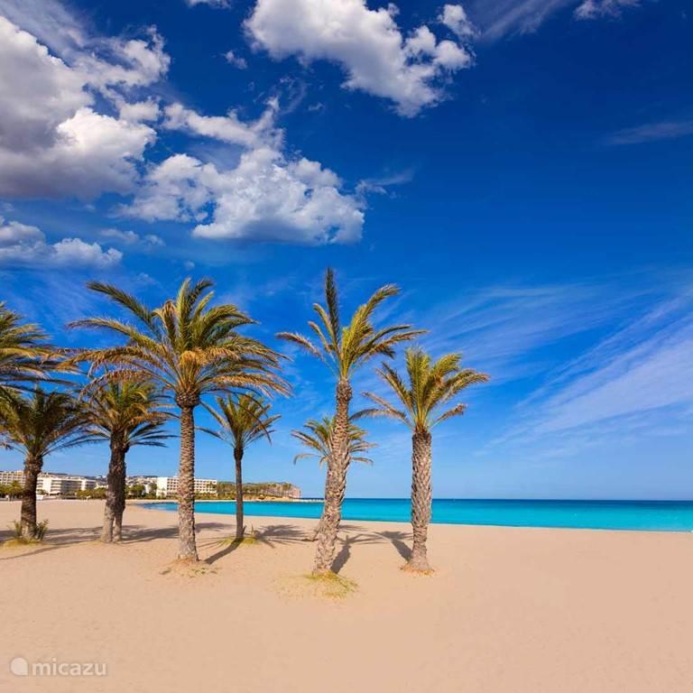 Arenal Beach 03
