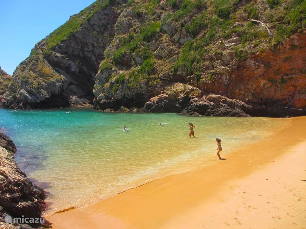 Berlengas stunning beach