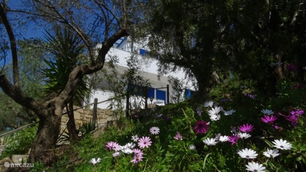 Villa gezien vanuit de tuin