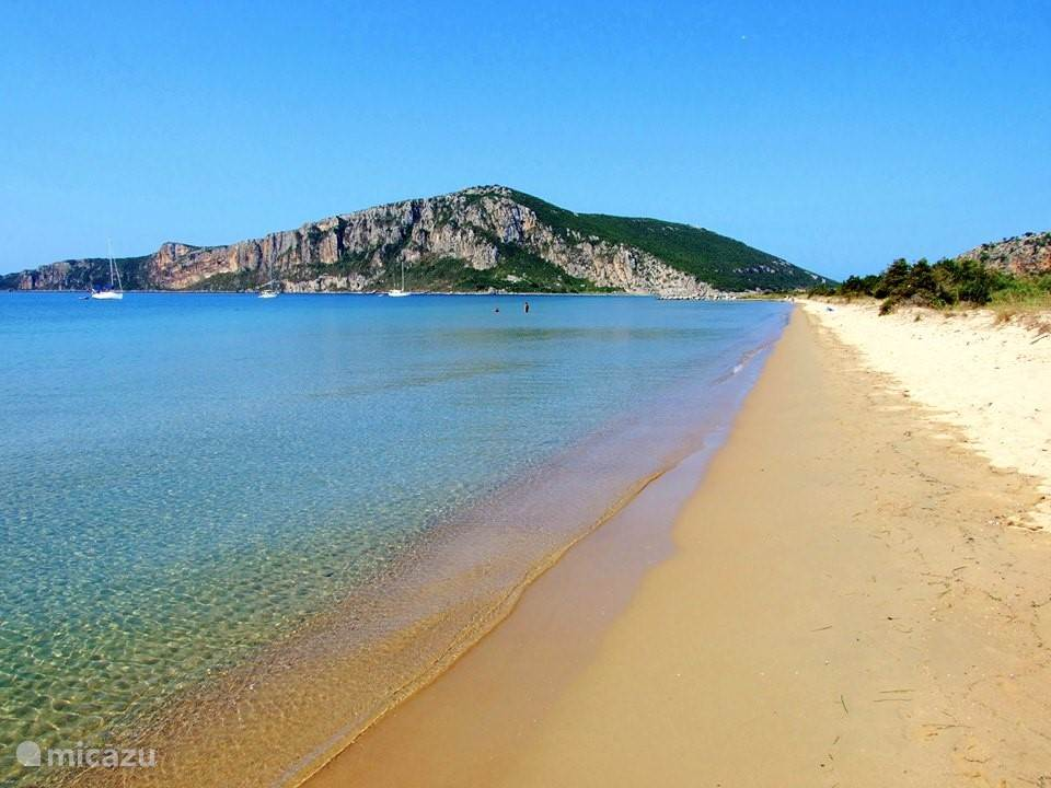 Golden Beach (Divari)