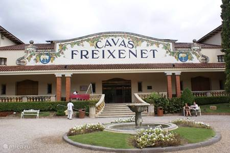 Heerlijk Cava proeven