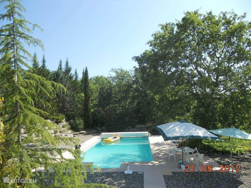 Zwembad met omringende tuin.