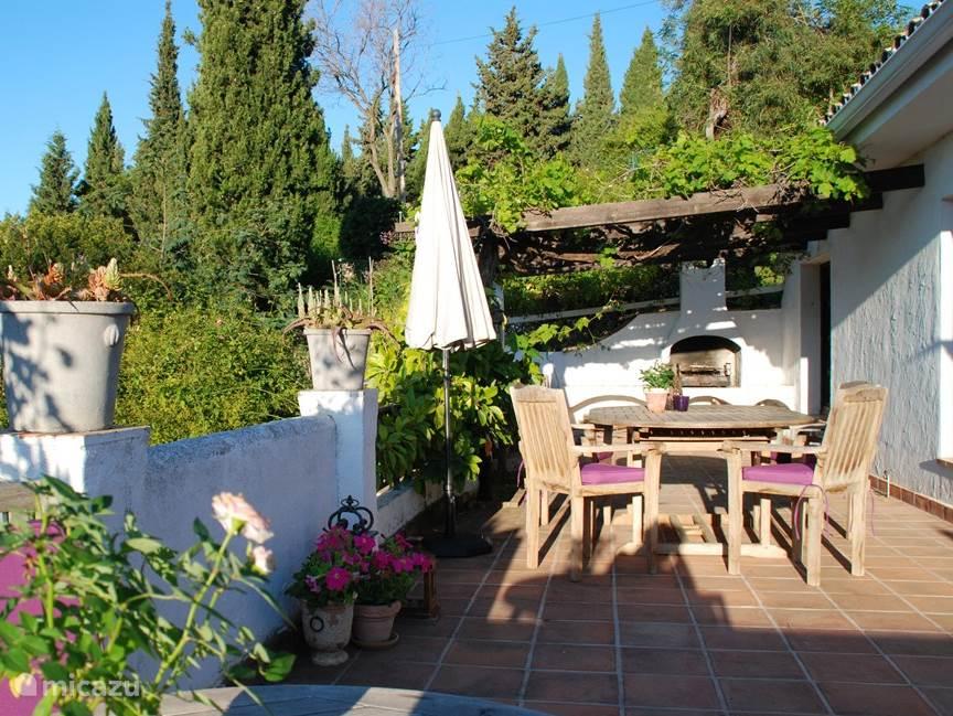 Zij-terras met BBQ onder de druiven ranken