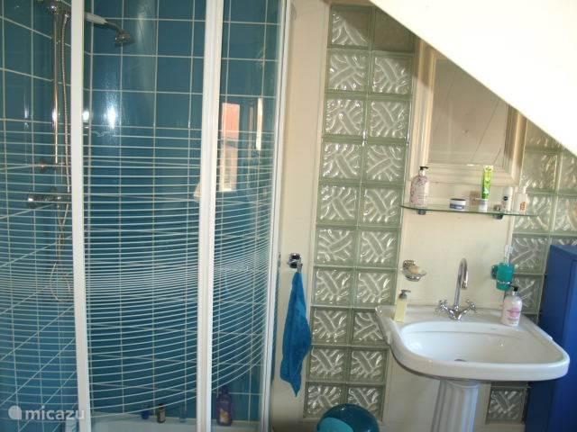 Badkamer met separate douche, wc en ligbad.