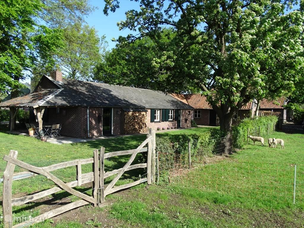 Achterzijde van het vakantiehuisje, met grote tuin. Rechts met de rode pannen het oude bakhuisje, dat ook tot uw beschikking staat tijdens uw verblijf.