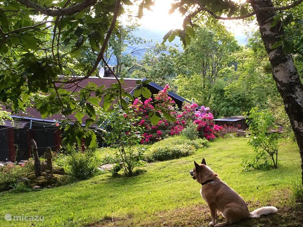 Vacation rental France, Auvergne, La Chabanne Chalet Chalet Les Bruyeres