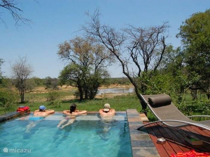 Vakantiehuis Zuid-Afrika, Limpopo, Hoedspruit Villa Mahlangeni Safari Lodge