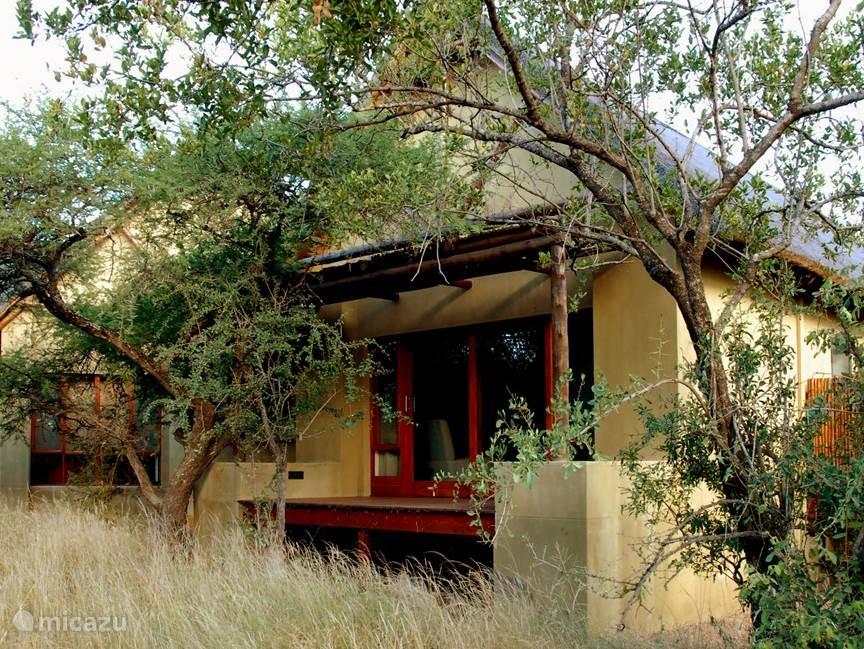 Verstopt in de bush - optimale privacy is gewaarborgd middels een plot van 10000 m2