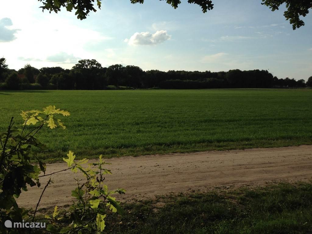 Het Bospark ligt aan een zandweg net buiten Ruurlo.