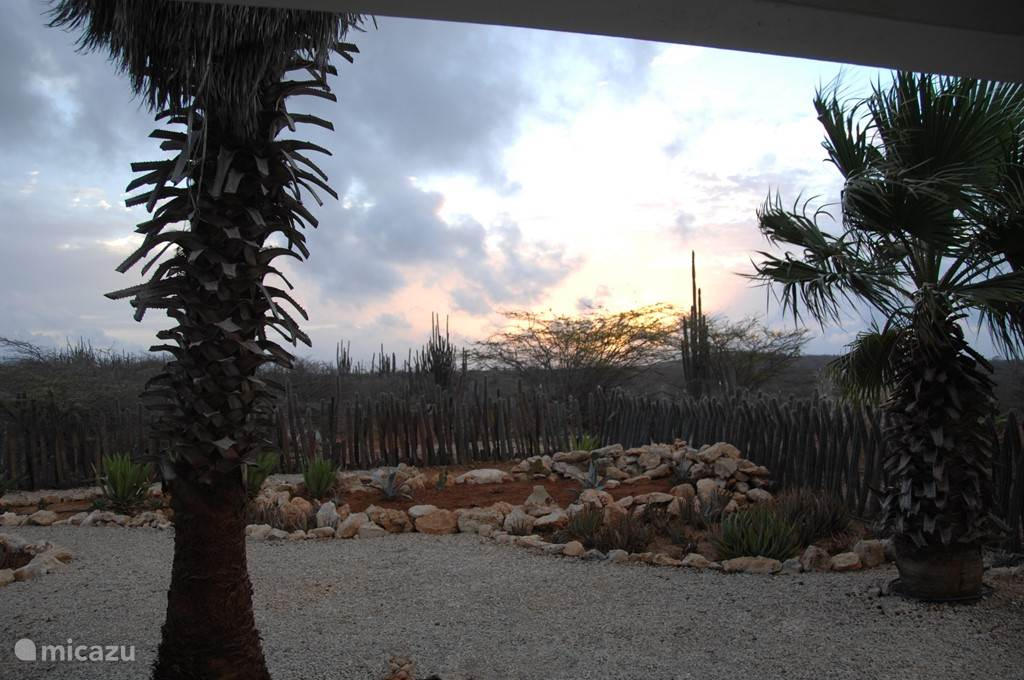 Uitzicht zonsopkomst studio 16B