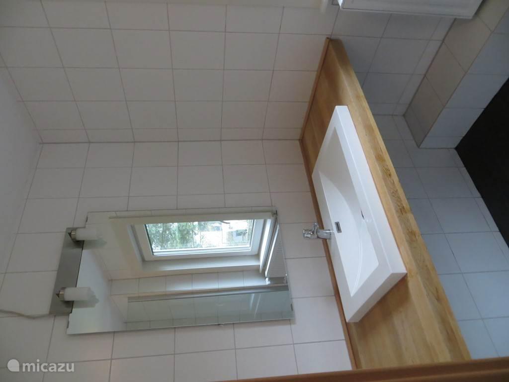 Badkamer met wastafel en douche