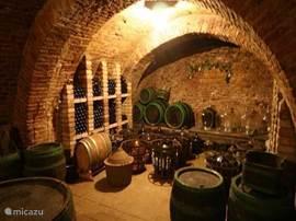 wijngaard bezoeken? er zijn een flink aantal wijngaarden in de omgeving waar u een heerlijk wijntje kunt kopen of een excursie/proeverij kunt ondernemen. Voor meer info kunt u ons mailen