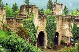 Een leuke trip vanaf 20 km van villa happy is een combinatie van wandelen en een trein reis naar een plaats waar ooit een machtige Romeinse grens fort - het kasteel Landstejn stond. Aan het einde van de 18e eeuw brandde het af, geleidelijk raakte het in verval.