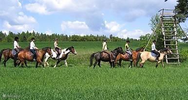 De schitterende vlakten in Tsjechië  zijn perfect om een sprintje te maken