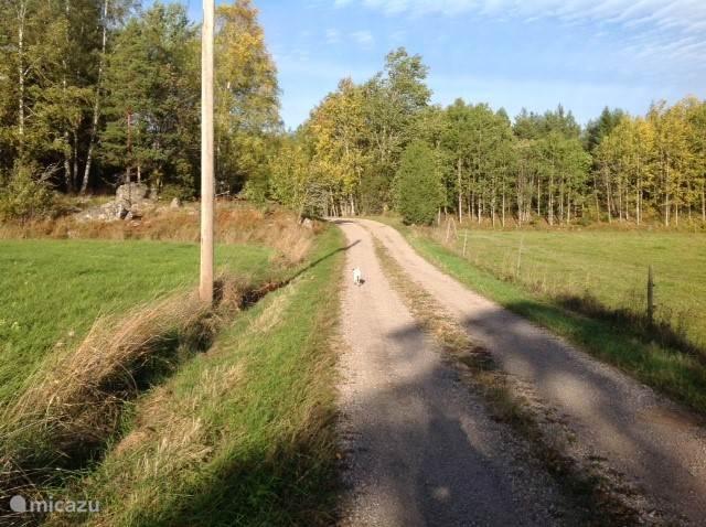 Rustig landweggetje langs Stämtorp. Bij 2 auto's per dag vinden we het al druk!
