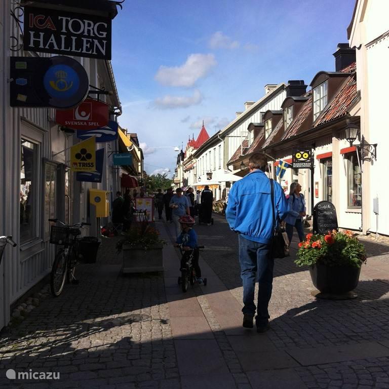 Het pittoresque dorpje Mariefred