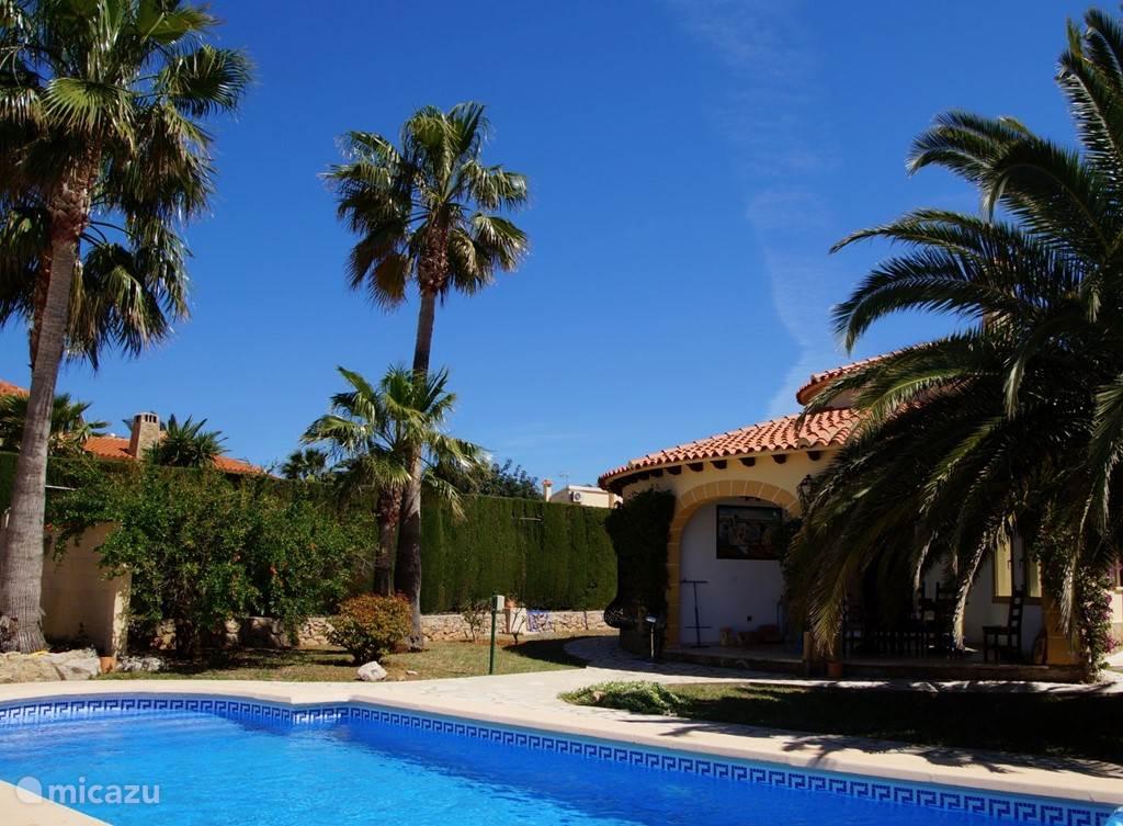 Ruim zwembad en heerlijke tuin met palmen.