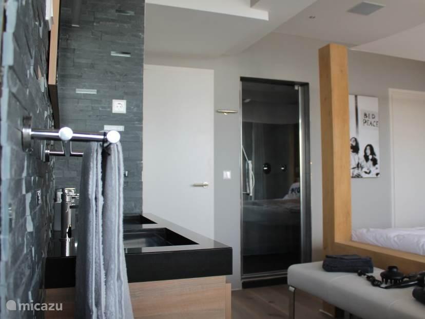 zicht op de douche voor 2 personen met sunshower ( infrarood )