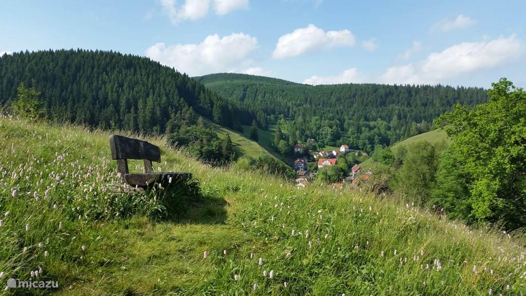 Vacation rental Germany, Harz, Wildemann Holiday house AltesRathaus Wildemann